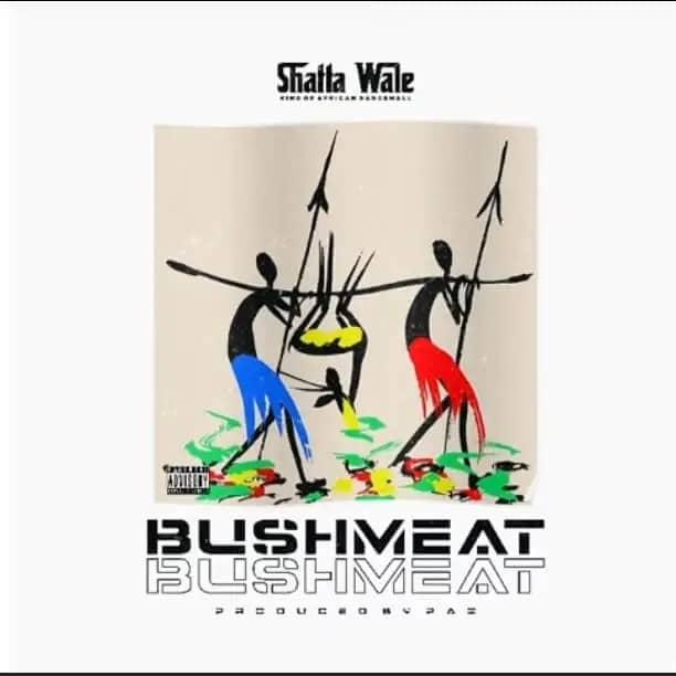 Shatta Wale - Bushmeat (Prod By Paq)
